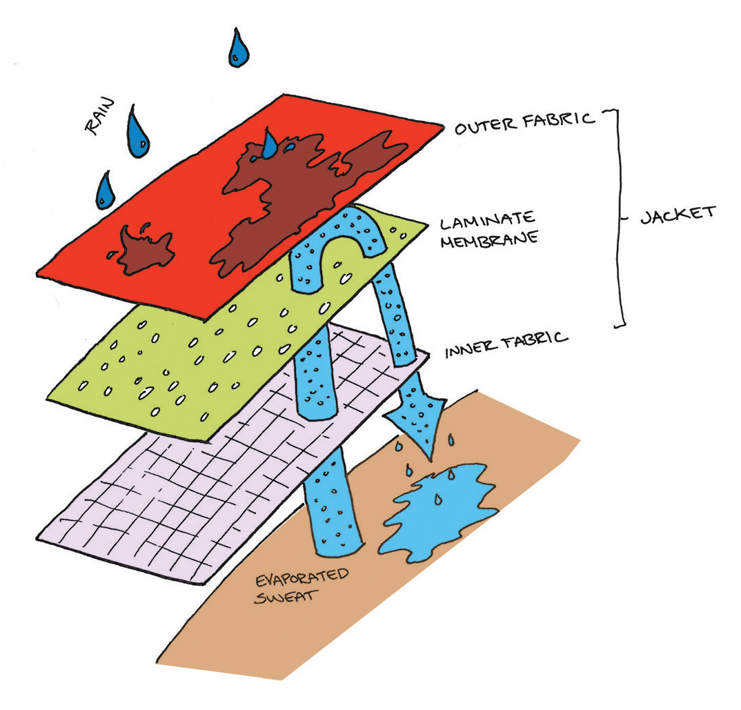 How To Wash Your Gore Tex Rain Jacket further Zara Vs Hm Whos In The Global Lead moreover Wartsila Hamworthy Wins Fsru likewise Food Colorings besides Sparco Size Charts. on clothing diagram