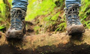 How to Clean & Waterproof Shoes and Boots